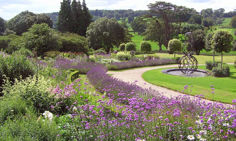a picture of a garden with a pathway lined with purple flowers and trees in the background