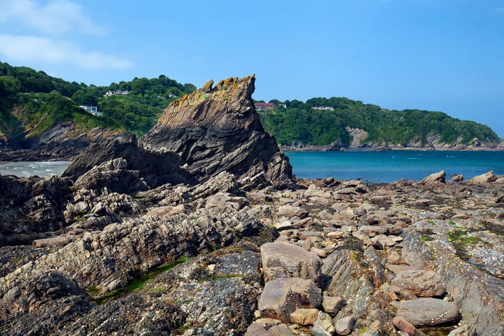 a picture of Combe Martin rocky beach with sea and trees in the background