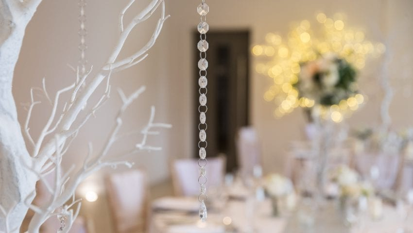 a close up on a white tree with dangling beads